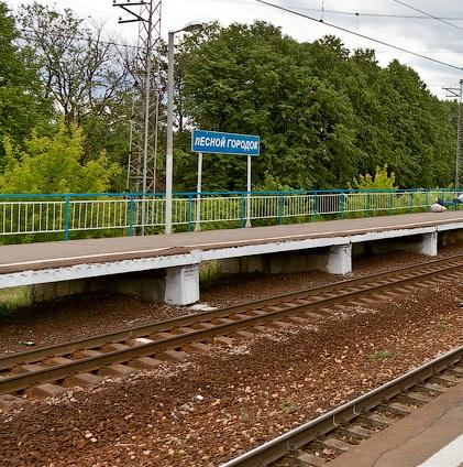 """Платформа на станции """"Лесной Городок"""""""