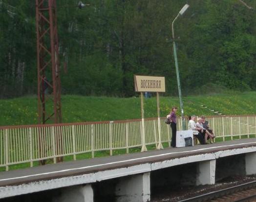"""Табличка с названием станции""""Весенняя"""""""