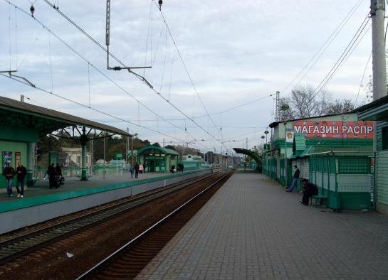 """Платформы на станции """"Быково"""""""