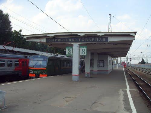 "Электропоезд на станции ""Бирюлёво-Товарная"""