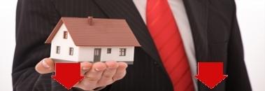 Продавец загородной недвижимости