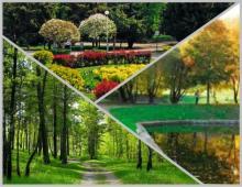 Природный потенциал участка позволяет в полной мере реализовать проект «зелёного миниполиса»
